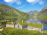 Norway, Western Fjords, Sogn Og Fjordane, Sheep Infront of Traditional Cottages by Lake Fotografisk tryk af Shaun Egan