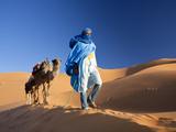 Tuareg Man Leading Camel Train, Erg Chebbi, Sahara Desert, Morocco Fotografisk tryk af Peter Adams