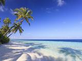 Maldives, Faafu Atoll, Filitheyo Island Bedruckte aufgespannte Leinwand von Michele Falzone