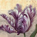 Purple Garden II Prints by Pamela Gladding
