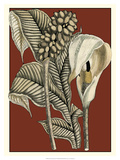 Exotic Botanical I Giclee Print