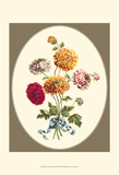 Antique Bouquet III Prints by Sydenham Teast Edwards