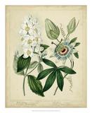 Cottage Florals II Giclee Print by Sydenham Teast Edwards
