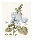 Bashful Blue Florals IV Impressão giclée por John Miller