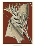 Exotic Botanical II Giclee Print