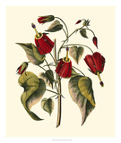 Jenna's Flowers I Giclee Print by  Sellier