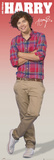 One Direction-Harry Plakater