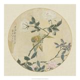 Oriental Bird Silk I Reproduction procédé giclée