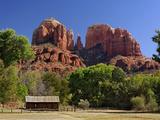 Cathedral Rocks, Sedona, Arizona Fotografisk trykk av Adam Jones