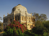 Mosque of Sheesh Gumbad, Lodhi Gardens, New Delhi, India Photographic Print by Adam Jones