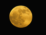 Full Moon Photographic Print by Arthur Morris