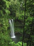 Sacred Waterfall, Montagne D'Ambre National Park, Antsiranana, Northern Madagascar Impressão fotográfica por Thomas Marent