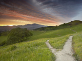 Trails, Mt. Diablo Near Walnut Creek, Central California, USA Photographic Print by Patrick Smith
