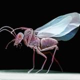 Lateral View of a Wasp, SEM Fotografisk tryk af David Phillips