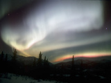Aurora Borealis or Northern Lights, Alaska, USA Reproduction photographique par Tom Walker