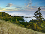 Fog Rolling over the Lower Hills at Mt. Tamalpais On A Late Spring Evening, California, USA Photographic Print by Patrick Smith