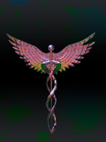 Caduceus Photographic Print by Carol & Mike Werner