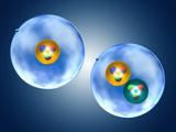 Hydrogen and the Isotope Deuterium Fotografisk tryk af Carol & Mike Werner