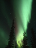 Aurora Borealis or Northern Lights, Alaska Range, Alaska, USA Reproduction photographique par Tom Walker
