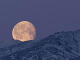 Moon over the Winter Alaska Range, Denali National Park, Alaska, USA Reproduction photographique par Tom Walker