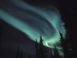 Aurora Borealis, Alaska, USA Reproduction photographique par Tom Walker