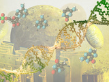 Illustration of DNA and the Cell Reproduction photographique par Carol & Mike Werner