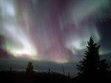 Aurora Borealis, Northern Lights, Alaska Range Mountains, Alaska, USA, North America Reproduction photographique par Tom Walker