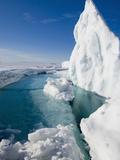During the Arctic Spring Impressão fotográfica por Louise Murray