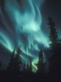 Aurora Borealis, Northern Lights, North America, Alaska, USA Reproduction photographique par Tom Walker