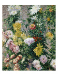 White and Yellow Chrysanthemums, 1893 Giclée-vedos tekijänä Gustave Caillebotte