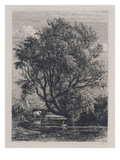The Willow (Etching) Giclee Print by Samuel Palmer