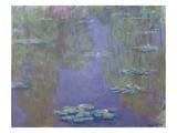 Nymphéas, 1903 Reproduction procédé giclée par Claude Monet