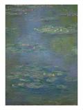 Waterlilies, Detail, 1903 Reproduction procédé giclée par Claude Monet