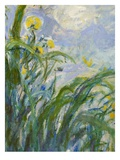 The Yellow Iris (Detail) Giclée-Druck von Claude Monet