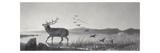 The Rescue Giclée-tryk af Edwin Henry Landseer