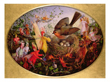 Cock Robin Defending His Nest Giclee Print by John Anster Fitzgerald