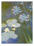 Waterlilies and Agapanthus, 1914-17 (Detail) Lámina giclée por Claude Monet