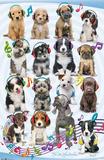 Keith Kimberlin Puppy Headphones Kunstdrucke