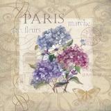 Paris Flower Market Poster par Carol Robinson