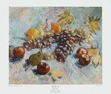 Grapes, Lemons, Pears, and Apples, 1887 Keräilyvedos tekijänä Vincent van Gogh