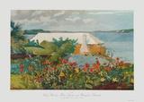 Bungalow Bermuda Samlertryk af Winslow Homer