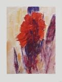 Canna Indica Samlarprint av Christian Rohlfs