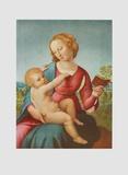 Madonna di Casa Colonna Samlertryk af Raphael,