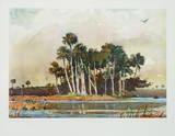 The Grove Reproduction pour collectionneur par Winslow Homer