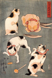 Four Cats in Different Poses Giclée-tryk af Kuniyoshi Utagawa