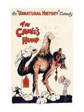 The Camel's Hump Print