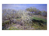 Spring Fruit Tees in Bloom Print by Claude Monet