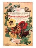 Vilmorin-Andrieux Seed Catalog 高品質プリント : フィリップ=ヴィクトワール・ド・ベックビルモラン