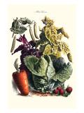 Vegetables; Cabbage, Peas, Strawberries, and Carrot Julisteet tekijänä Philippe-Victoire Leveque de Vilmorin
