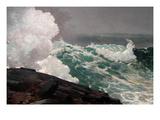 Northeaster Kunstdrucke von Winslow Homer